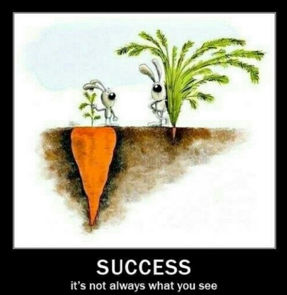 Sucess is not always what you see