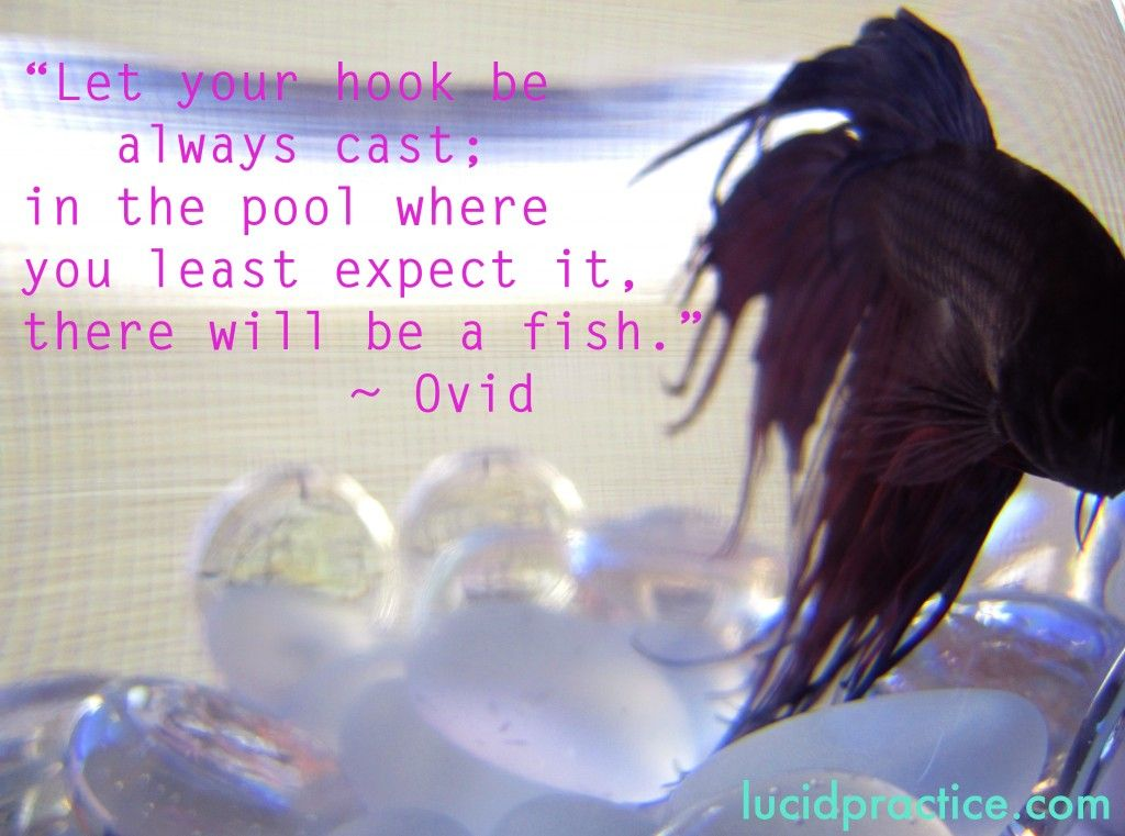 Ovid_quote-lucidpractice