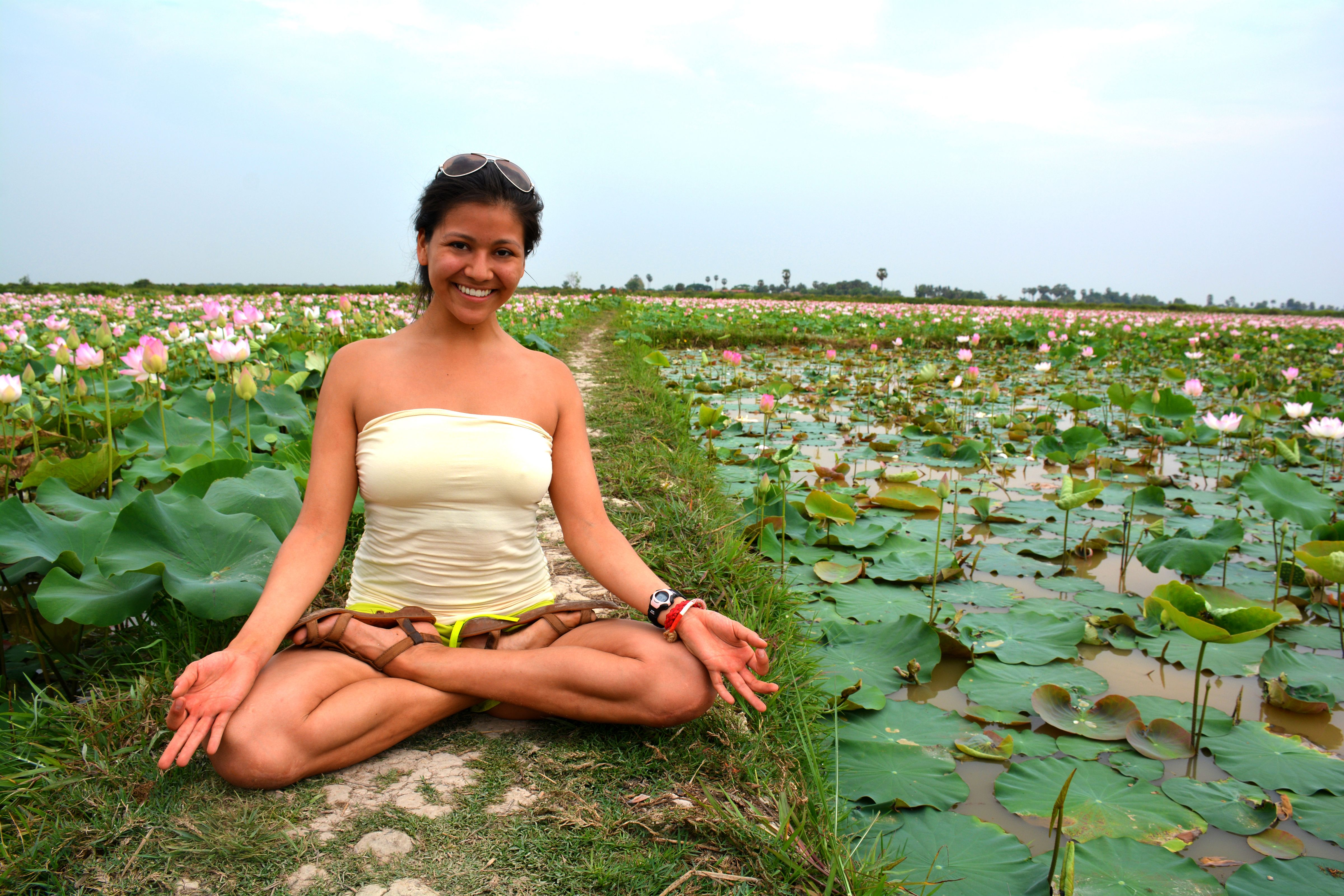 Lotus Pose Lotus Flowers Cambodia