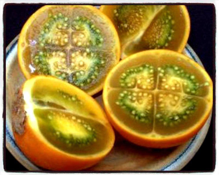 Naranjilla Colombia Lulo Colombia Lulo Ecuador